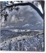 Snowfall Covers Northern Arizona For Christmas Canvas Print