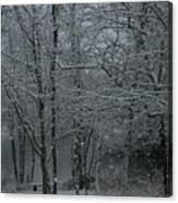 Snowfall On The Creek Canvas Print