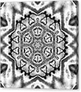 Snowflake 7 Canvas Print