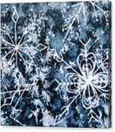 Snowflake Greetings Canvas Print