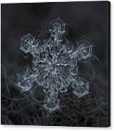 Snowflake Photo - Complicated Thing Canvas Print