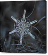 Snowflake Photo - Steering Wheel Canvas Print