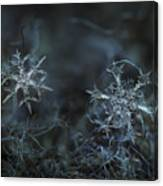 Snowflake Photo - When Winters Meets - 2 Canvas Print