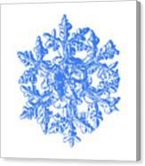 Snowflake Vector - Gardener's Dream White Version Canvas Print