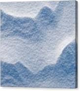 Snowforms 3 Canvas Print