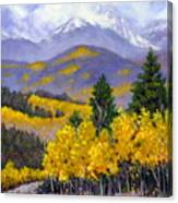 Snowing in the Mountains Canvas Print