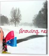 Snowing Nevando Canvas Print