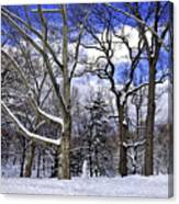 Snowman In Central Park Nyc Canvas Print