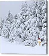 Snowmen In France Canvas Print