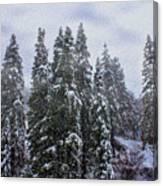 Snowy Christmas At Big Bear Lake Canvas Print