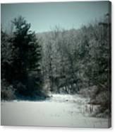 Snowy Creek Bend Canvas Print