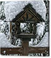 Snowy Feeder Canvas Print
