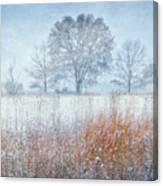 Snowy Field 2 - Winter At Retzer Nature Center  Canvas Print