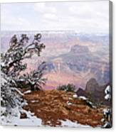 Snowy Frame - Grand Canyon Canvas Print
