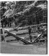 Snowy Gate Canvas Print