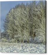 Snowy Landscape #f3 Canvas Print