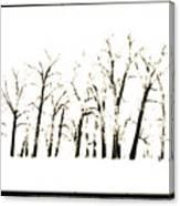 Snowy Line Up Canvas Print