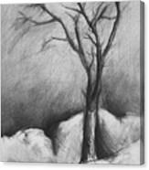 Snowy Moonlight Canvas Print