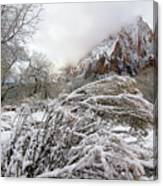 Snowy Mountains In Zion Canvas Print