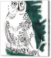 Snowy Owl II Canvas Print