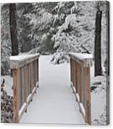 Snowy Path Canvas Print