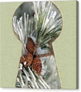 Snowy Pine Keyhole Canvas Print