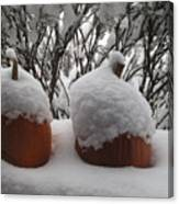 Snowy Pumpkins Canvas Print