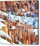 Snowy Queen's Garden  Canvas Print