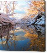 Snowy Refections Canvas Print