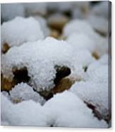Snowy Stones Canvas Print