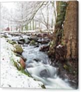 Snowy Stream Landscape Canvas Print