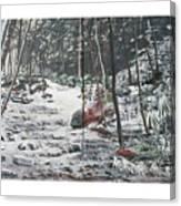 Snowy Stream2 Canvas Print