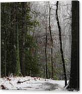 Snowy Trail Quantico National Cemetery Canvas Print