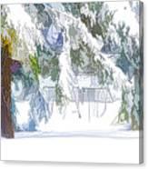 Snowy Trees In Winter Landscape  Canvas Print