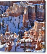 Snowy Turrets Canvas Print