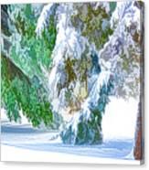 Snowy Winter Canvas Print