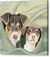 Snuggle Buddies Canvas Print