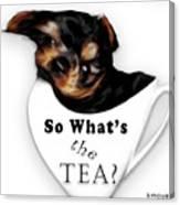 So What's The Tea? Canvas Print