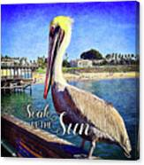 Soak Up The Sun Quote, Cute California Beach Pier Pelican Canvas Print