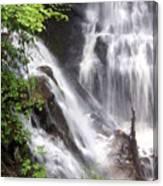 Soco Falls 2 Canvas Print