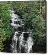 Soco Falls Canvas Print