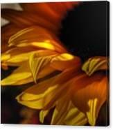Soft Flame Canvas Print