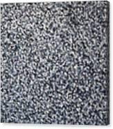 Soft Grey Scale  Canvas Print