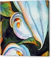 Soft Swirl Canvas Print