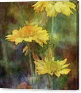 Softly Yellow 3052 Idp_2 Canvas Print