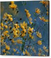 Softly Yellow And Blue Canvas Print