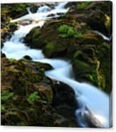 Sol Duc Falls 2 Canvas Print