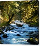 Sol Duc River Above The Falls - Washington Canvas Print
