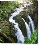 Sol Duc Solitude Canvas Print
