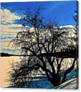 Solace On Silver Lake Canvas Print